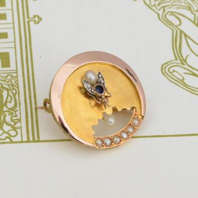 18k Gold Brooch With Fly