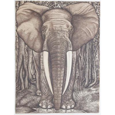 L'éléphant – Eau-forte Originale