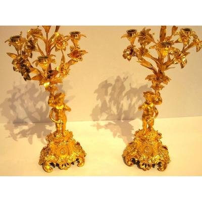 Pair Of Candelabra Late 19th
