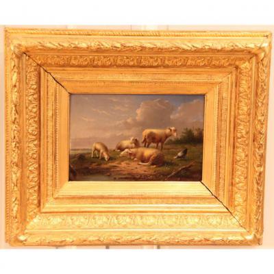 F. Vandeverdonck - Paysage Aux Moutons