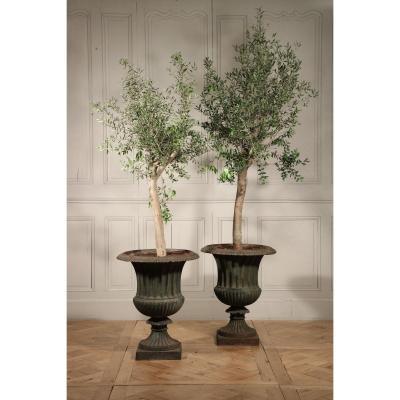 Pair Of Cast Iron Garden Vases