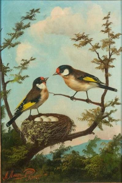 Goldfinches And Red Gorges Signed Meucci And Dated 1883