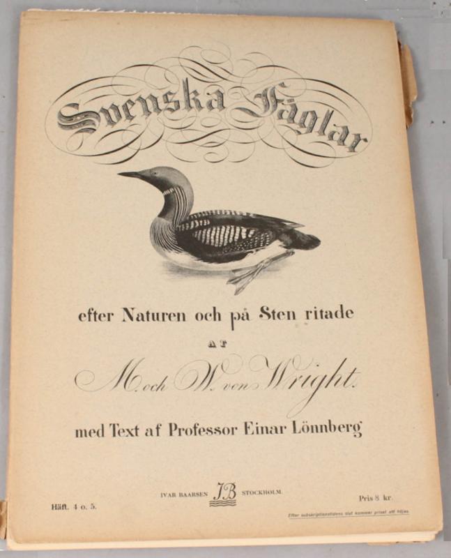 12 Lithographs Of Birds - 1921-photo-2