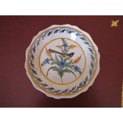 Earthenware Plate