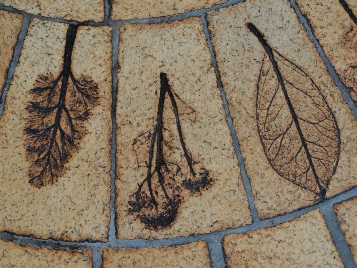 """Table de salon """"herbier"""" par Roger Capron-photo-3"""