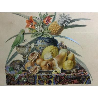 Chazal Antoine 1834 Aquarelle Nature Morte Avec Fruits Fleurs  Et Perruche