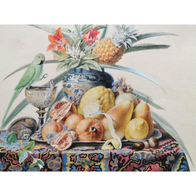 Chazal Antoine 1834 Aquarelle Nature Morte Perruche Ananas XIX ème