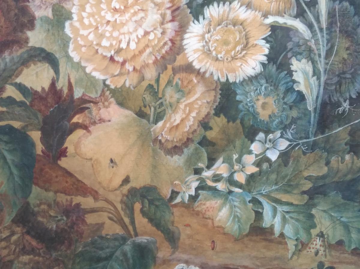 Paire De Natures-mortes d'Anne Brettingham De Carle, XVIIIe siècle-photo-2