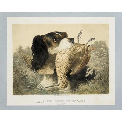 [5 Hunting Lithographs By Albert Adam]
