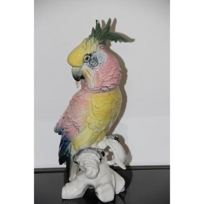 Porcelaine De Saxe Karl Ens Grand Perroquet Cacatoés  Haut 36,5 Cm