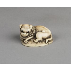 Netsuke – Chiot Couché Sur Un Tapis. Japon Edo XVIIIe Siècle