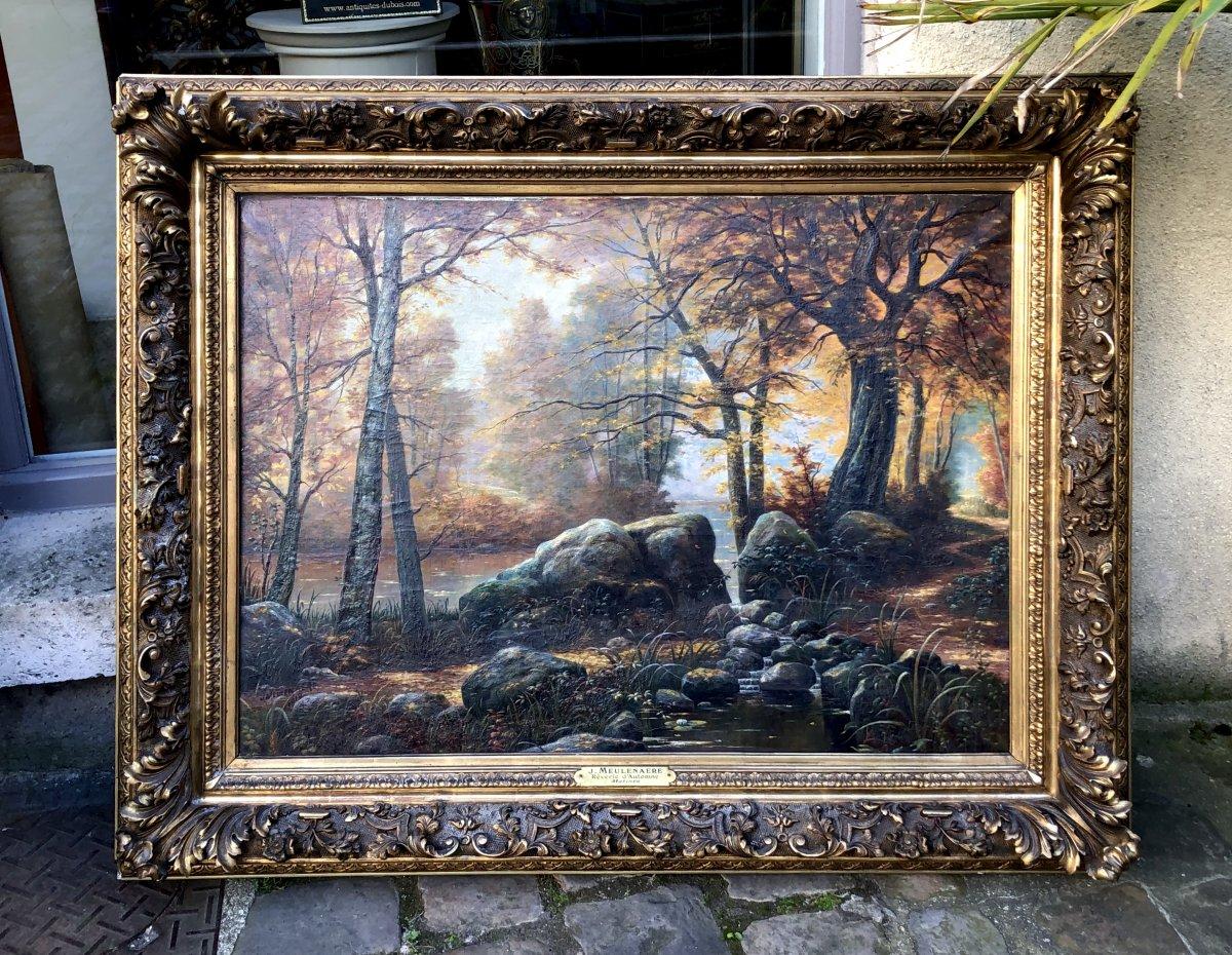 Peinture D'un Sous Bois Signé J.meulenaere.