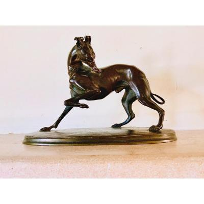 Bronze «Lévrier patte en l'air» De Antoine Louis Barye