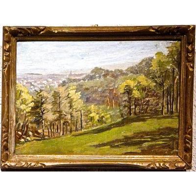 Les environs de POLLIONNAY  Post-Impressionniste - Non signé