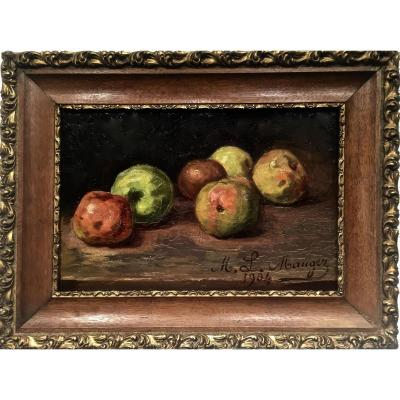 Apples - Ml Mauger 1904
