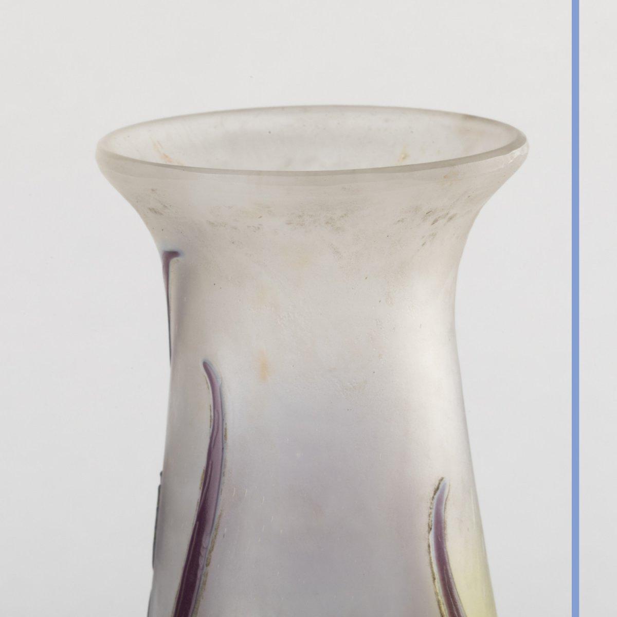 Emile Gallé (1846-1904), vase aux Iris en verre multicouche à décor de fleurs brun et bleu clair, XIXe-photo-2