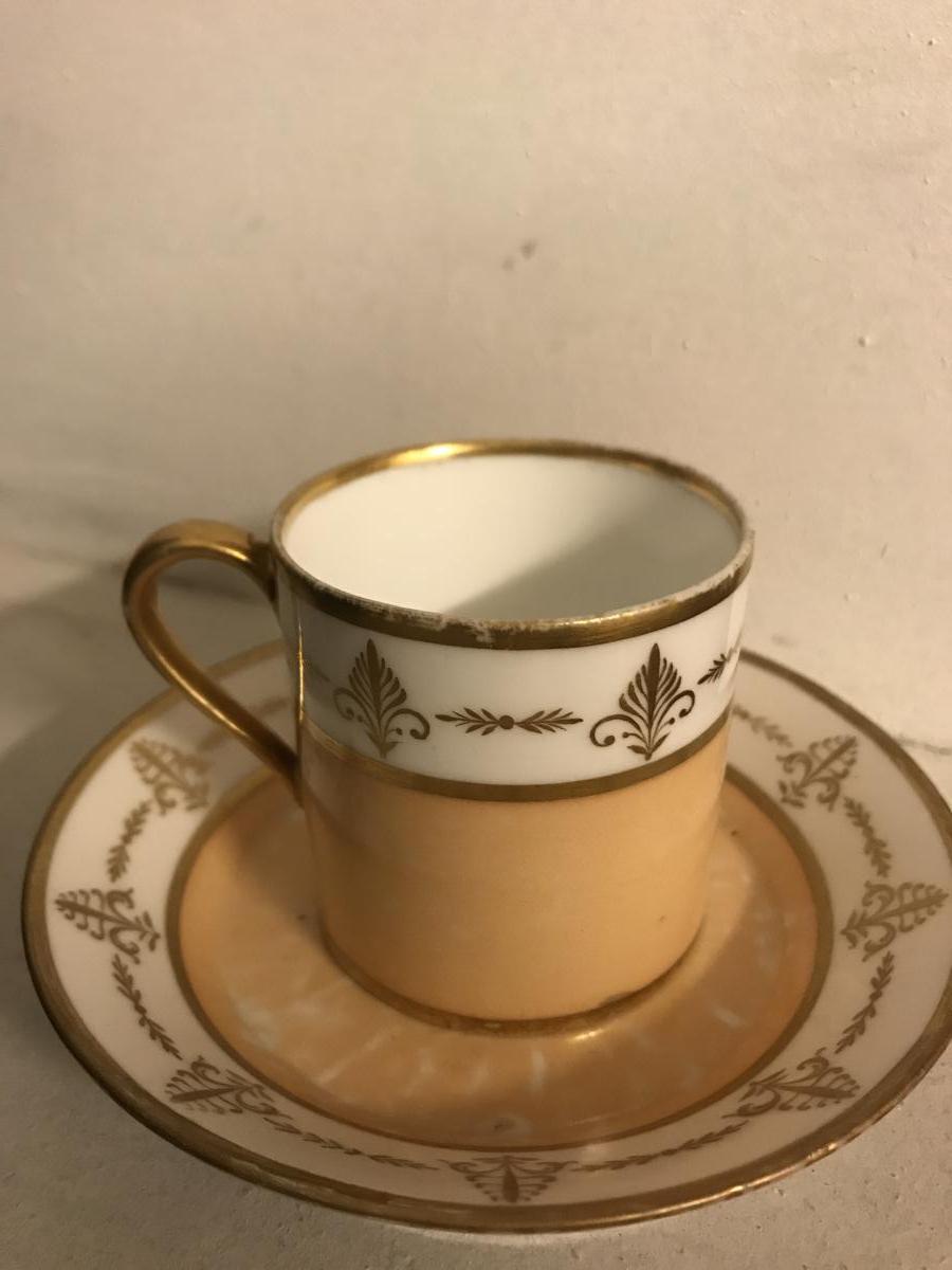 Tasse Et Sa Soucoupe En Porcelaine De Sèvres