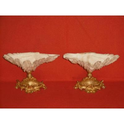 Paire De Coquillages Montés Bronze