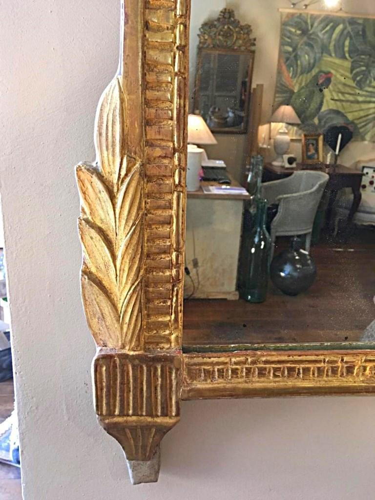 Miroir Louis XVI Bois Doré 19 ème Siècle