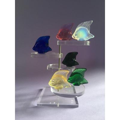 Série de 6 poissons de différentes couleurs  signés Lalique France - Modèle crée en 1913.