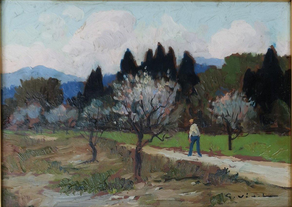 Gustave Vidal, 1895-1966. ,  Les Amandiers En Fleurs.