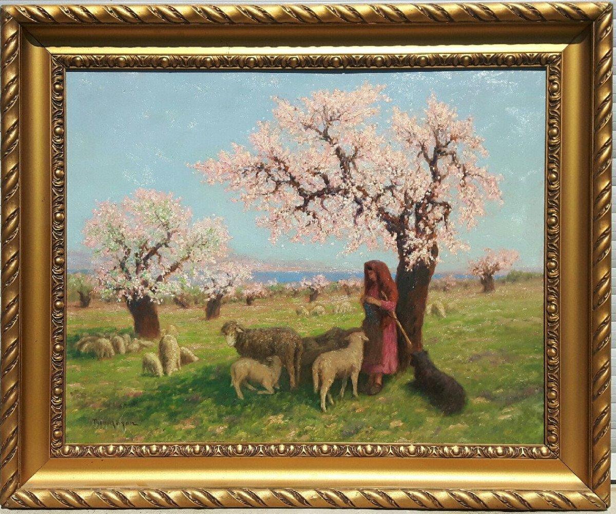 Théo Mayan (1860-1936), Les Amandiers En Fleurs.-photo-2