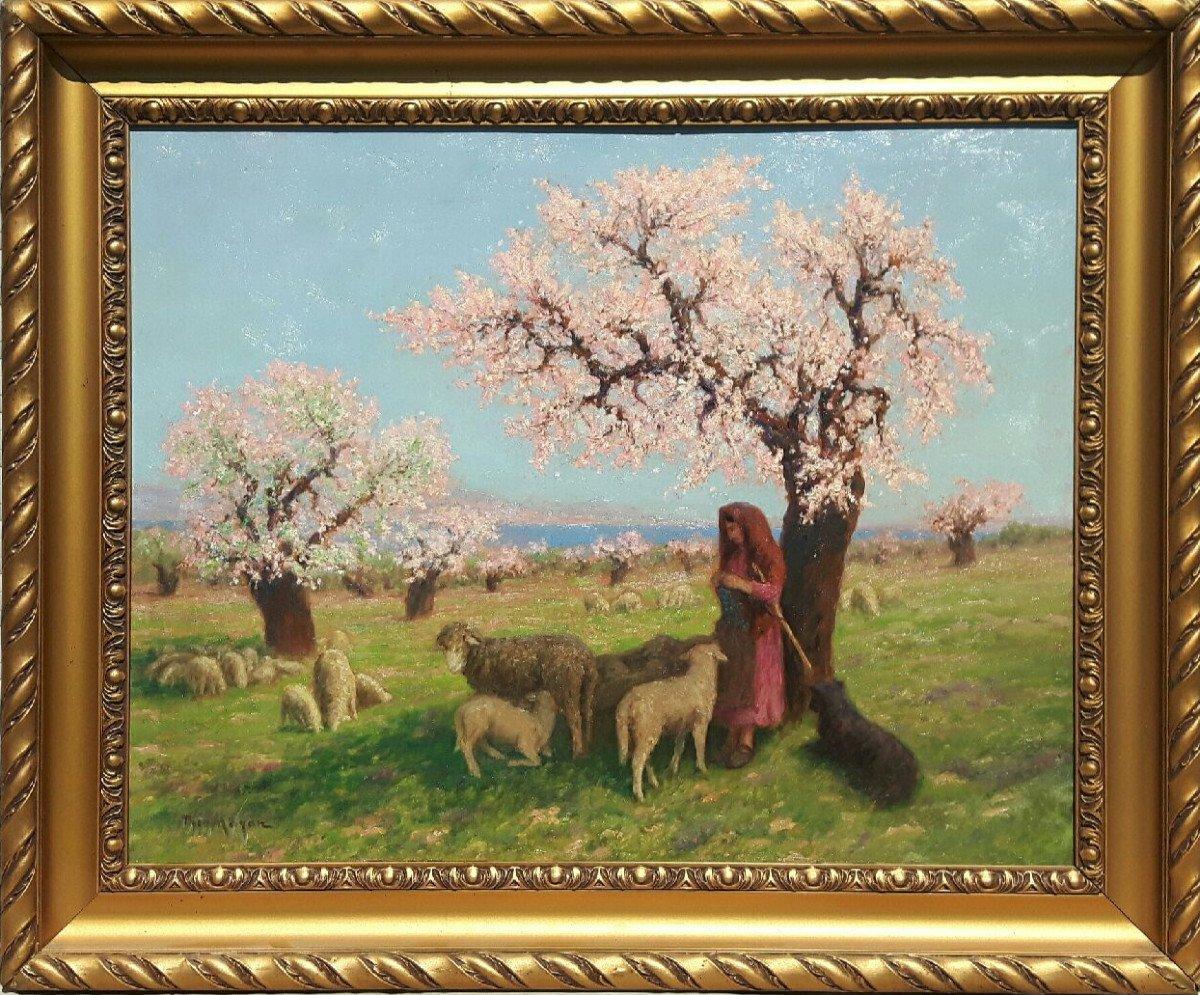 Théo Mayan (1860-1936), Les Amandiers En Fleurs.-photo-3