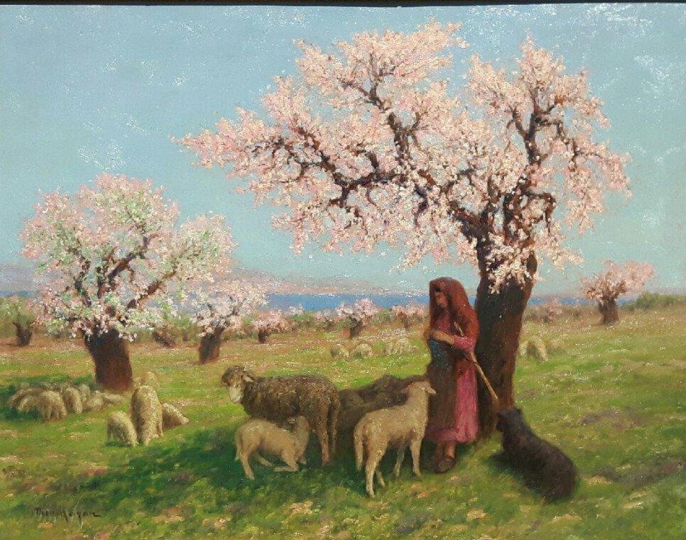 Théo Mayan (1860-1936), Les Amandiers En Fleurs.