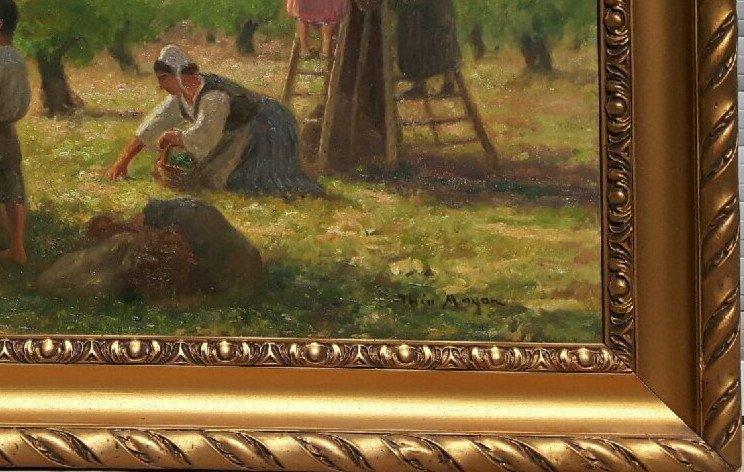 Théo Mayan (1860-1936),  La Cueillette Des Olives.
