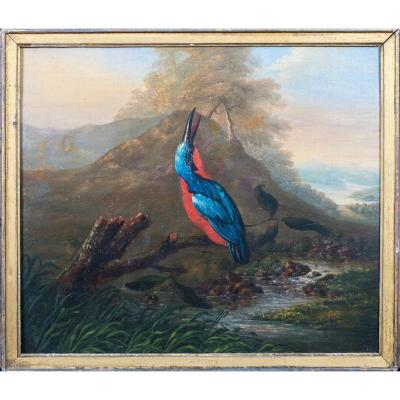 Portrait d'Un Martin-pêcheur, XVIIIe Siècle  Attribué à Philip Reinagle (1749-1833)