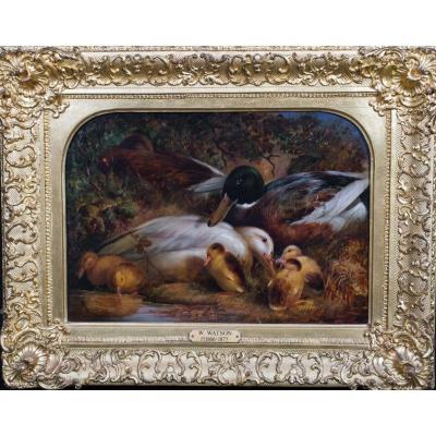 Une Famille De Canards, 19ème Siècle  Par William II Watson (1831-1921)