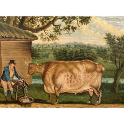 Le Bœuf Newbus, XVIIIe Siècle  Attribué à Thomas Weaver (1774-1843)