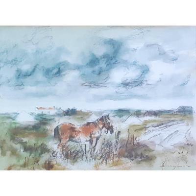 Henry  Simon, Peintre Vendéen: Cheval Dans Un Pré En Vendée