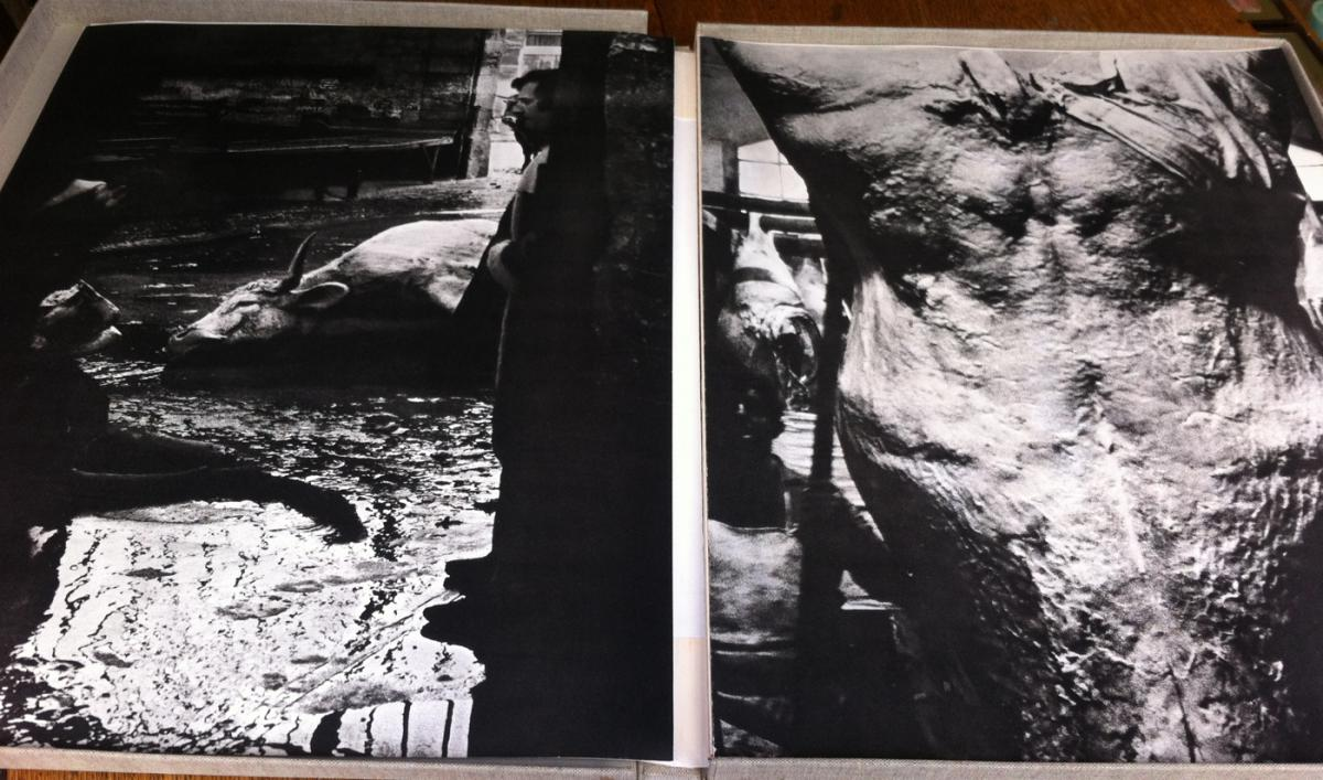 Portfolio-the-oxen Die As Gardy Artigas & Lemesle-lithographs-maeght-photo-3