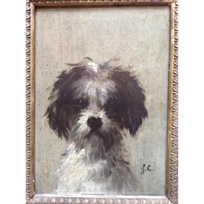 Portrait Of Dog By Jules Chardigny (1842-1892)