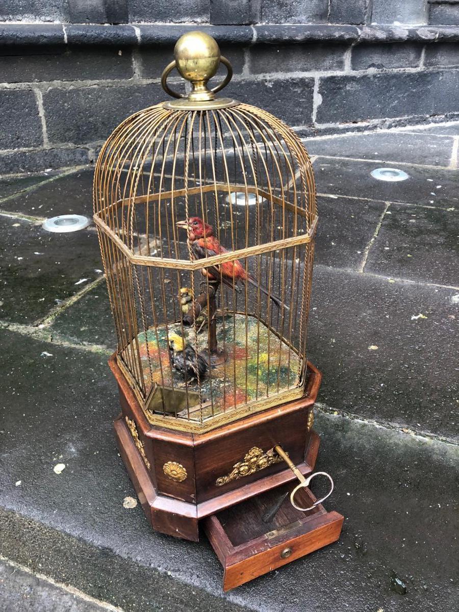 Automate Cage à 3 Oiseaux à Monnayeur Bontems