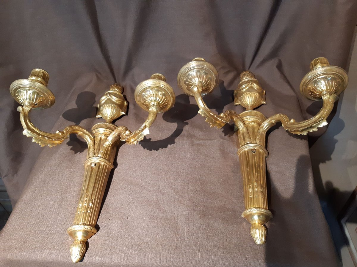 Pair Of Gilt Bronze Wall Lights From The Louis XVI Period