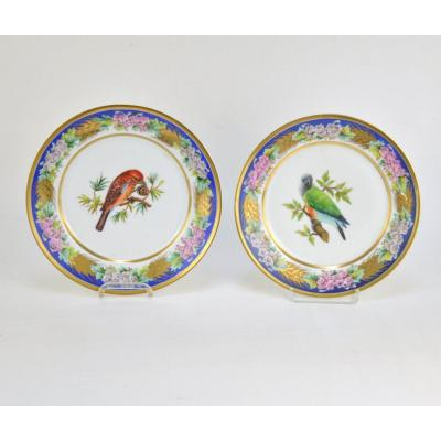 Pair Of Old Brussels Porcelain Plates With Buffon Bird Decoration By Faber Manufacture