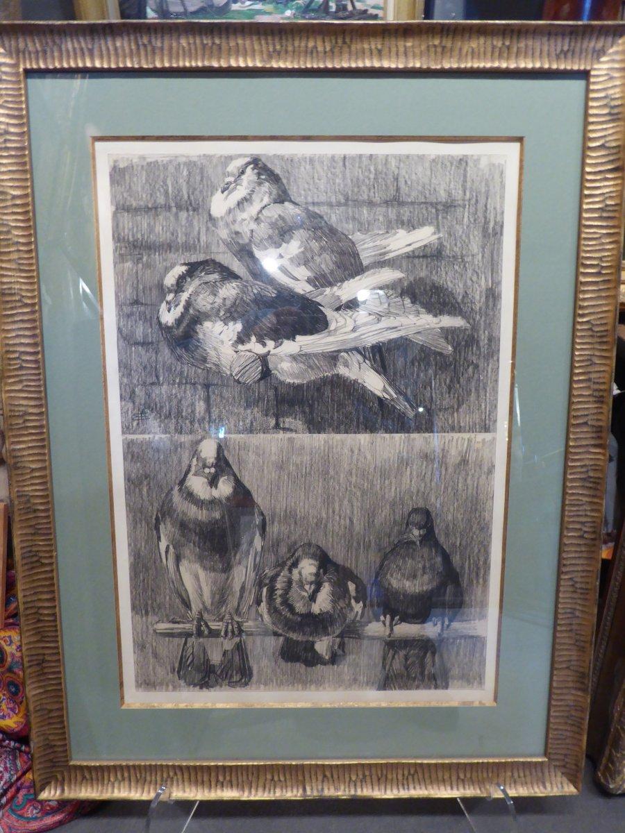 """Mathurin Méheut, """"les pigeons"""" dessins originaux."""