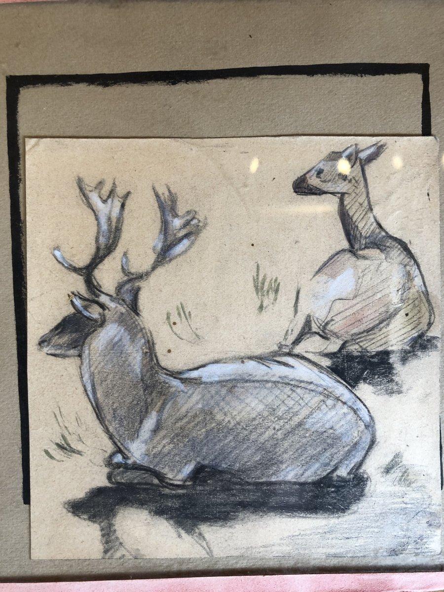 Série De 5 Dessins Animaliers - Canard, Hibou, Vautour, Oie, Cerf-photo-2