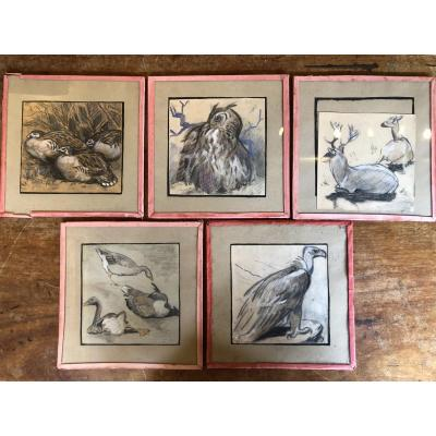 Series Of 5 Animal Drawings - Duck, Owl, Vulture, Goose, Deer