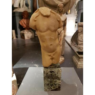 Torse d'Apollon