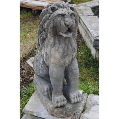 Beautiful Pair Of Lions Sitting Ancient Stone