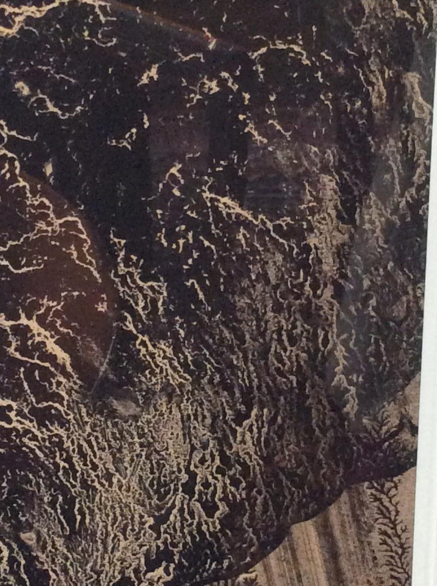 E. T.   -  Miodrag-photo-4
