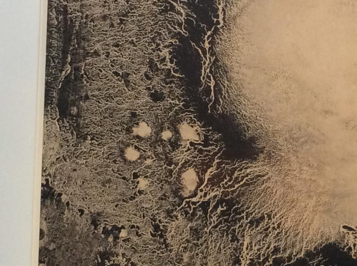 E. T.   -  Miodrag-photo-1