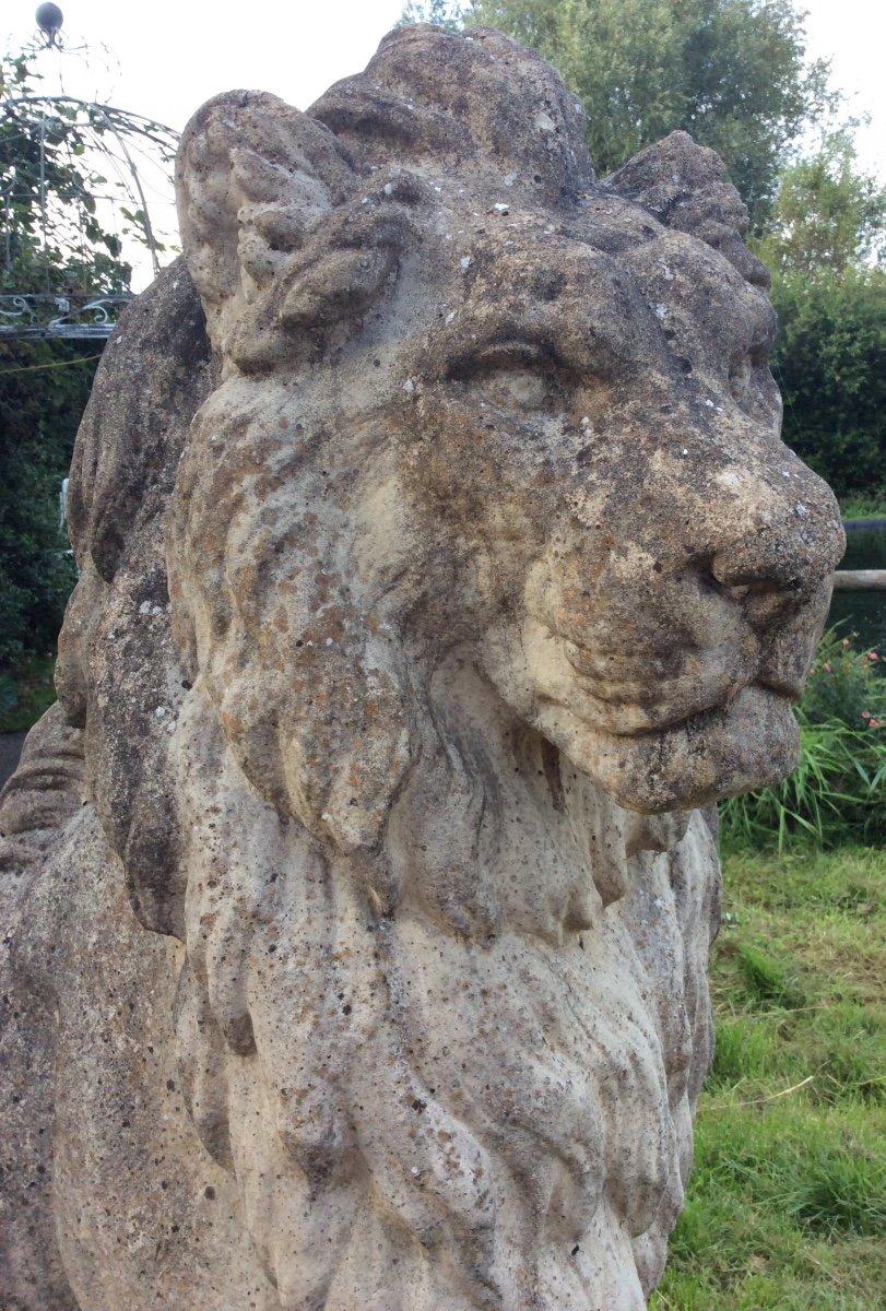 Superbe Paire De Lions En Pierre-photo-2