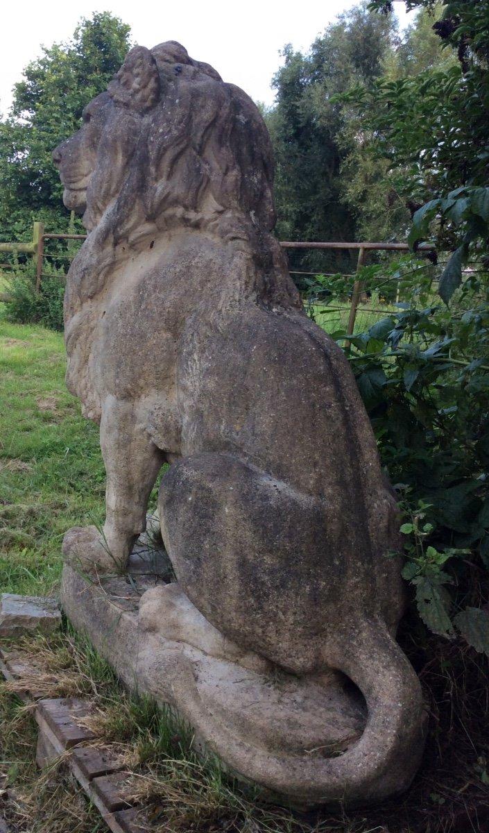 Superbe Paire De Lions En Pierre-photo-3