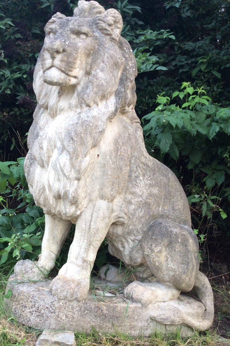 Superbe Paire De Lions En Pierre-photo-6