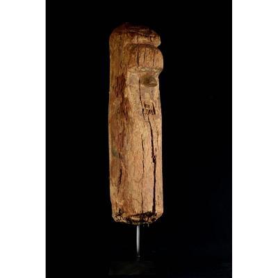 Partie d'Un Totem Salampasu - R.d.c.