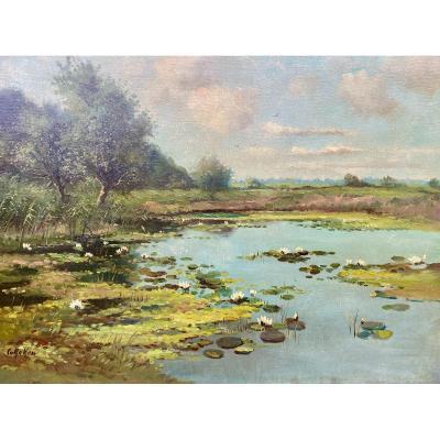 Nénuphars, Van Reken Cornelis 1879 - 1959, École De Harlem